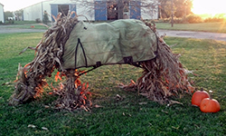 Hay Horse